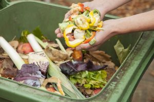 Kitchen and Garden Waste