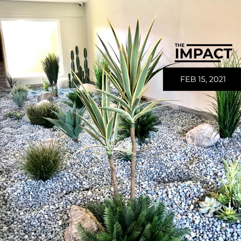 The Impact Feb 15 2021